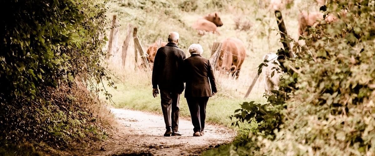 Hjelp til generasjonsskifte gård - Landbruksmegling